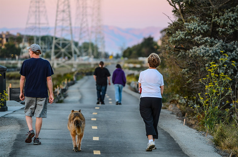An older man, a brown German Sheppard, and an older woman walk along a paved pedestrian path at sunset